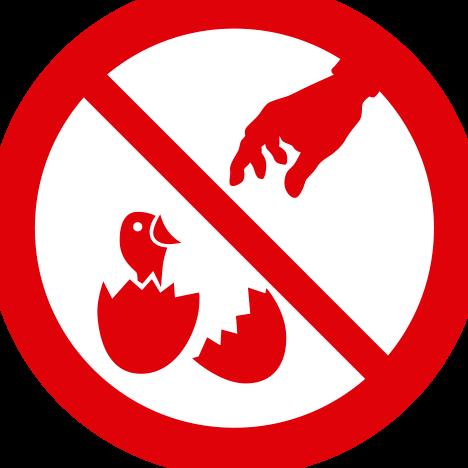 No se permite la captura de animales