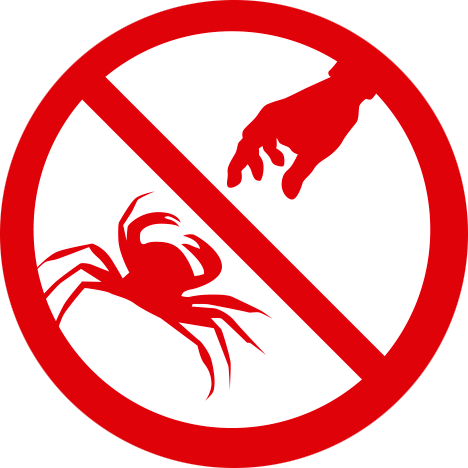 No se permite el marisqueo
