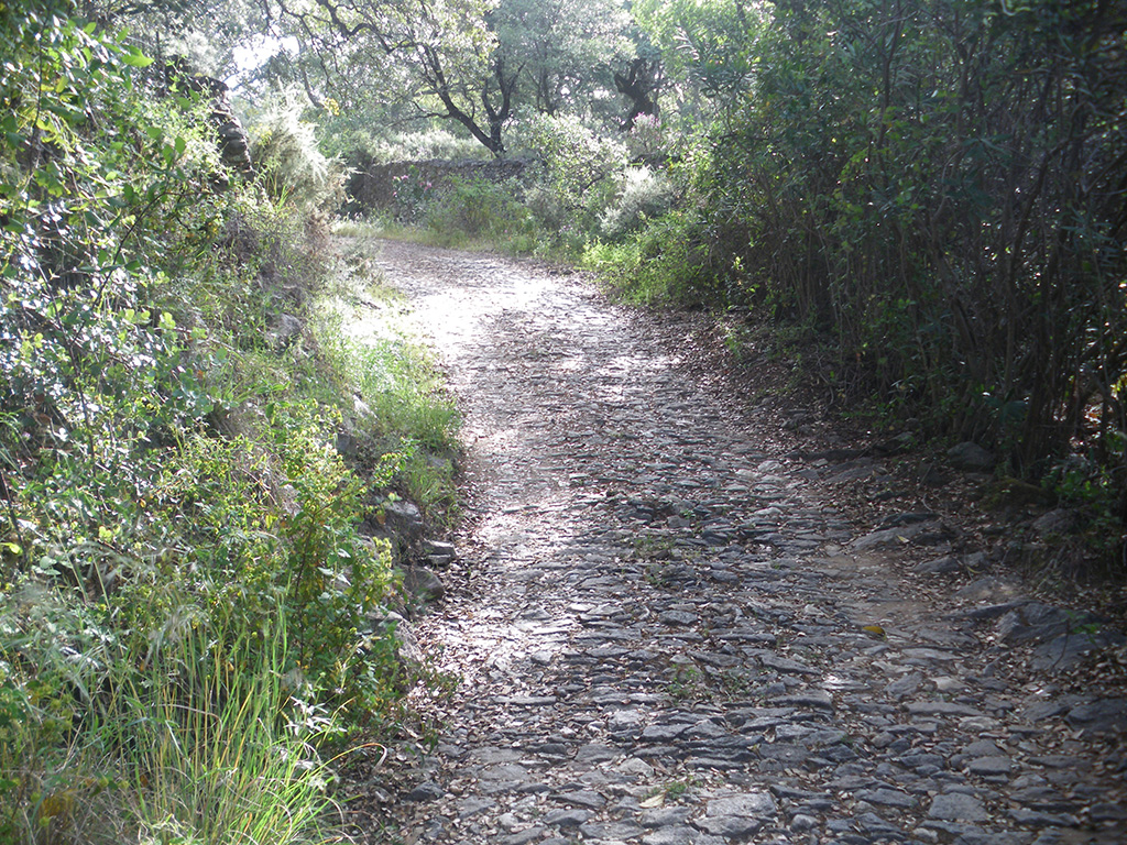 Camino empedrado entre cercas de piedra