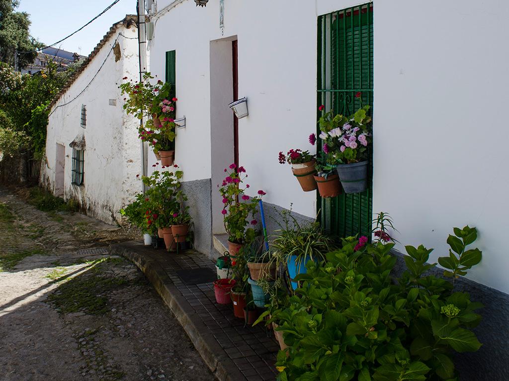 Calle de Corterrangel. Las macetas con geranios en las fachadas