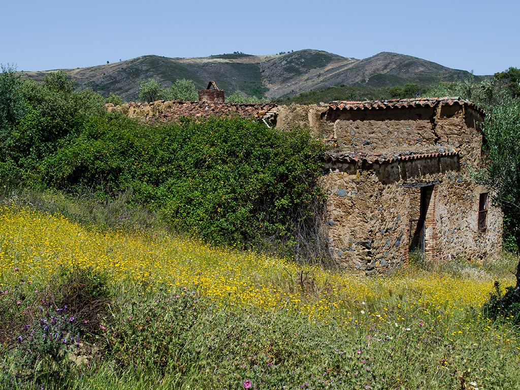Vista hacia la Sierra de la Bujarda.