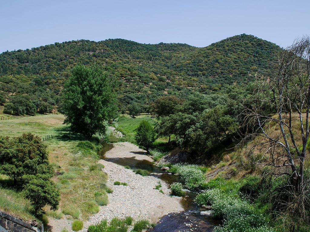 Río Caliente desde el puente sobre las vías del tren.
