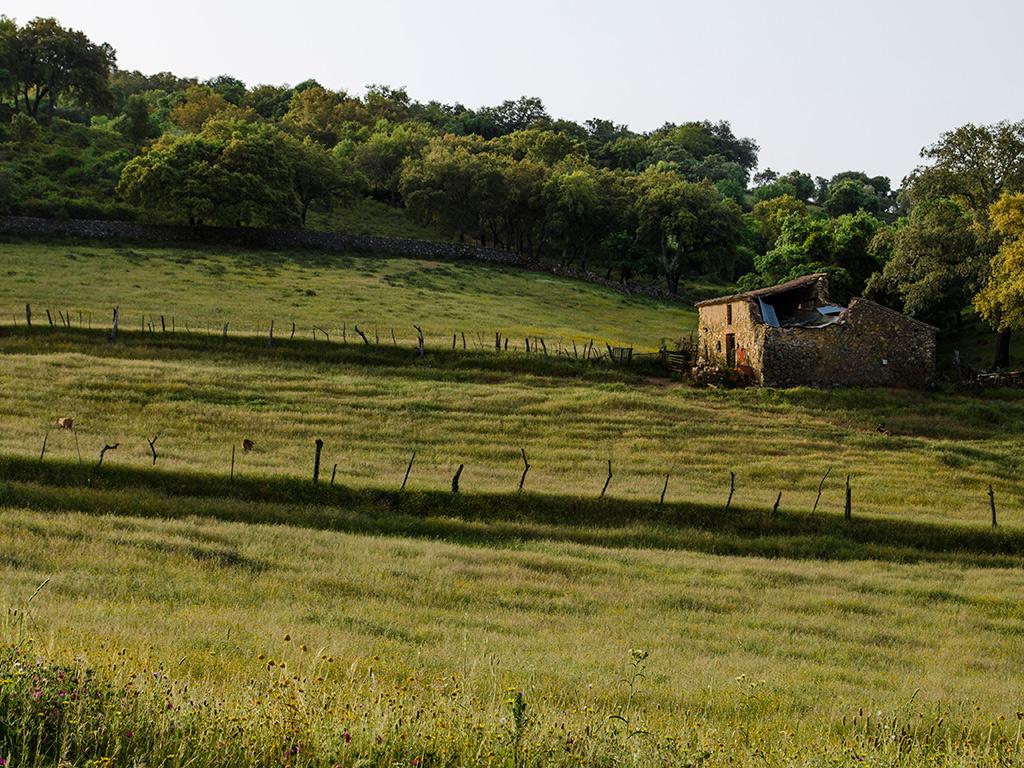 Antigua casa de piedra hallándose relativamente cercana la era mencionada.