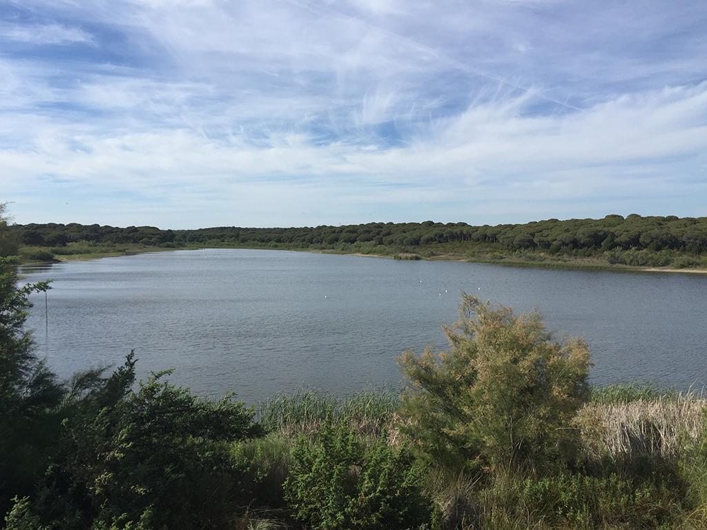Panorámica de la Reserva Natural Laguna de El Portil