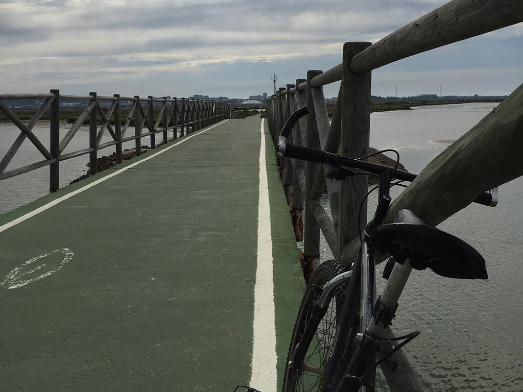 Puente peatonal/ciclista sobre las Marismas del Odiel.