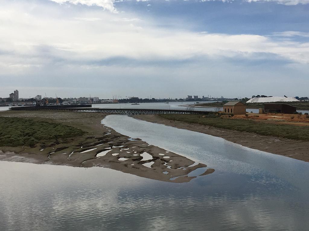 Vista panorámica del Muelle de Tharsis y de la ciudad de Huelva al fondo