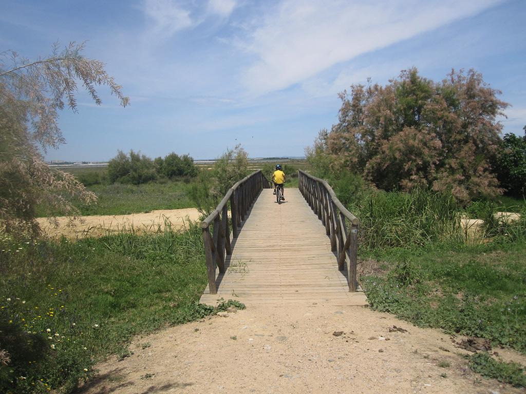 Puente de madera en la vereda Camino del Loro