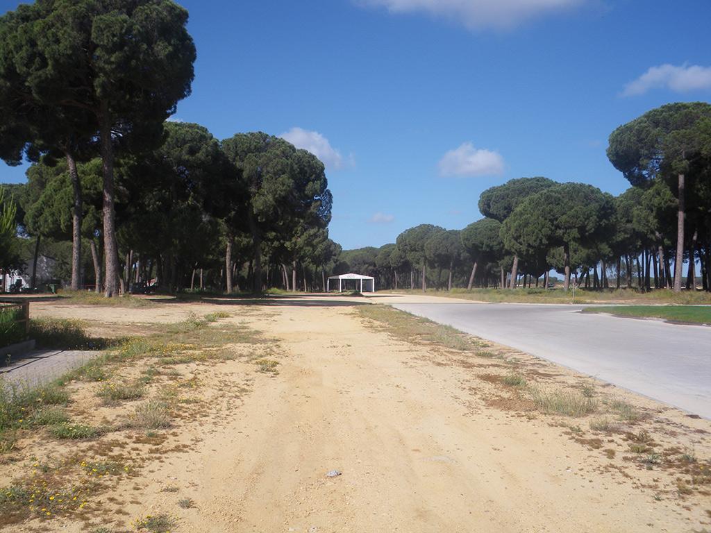 Entrada en Hinojos por la explanada de la feria
