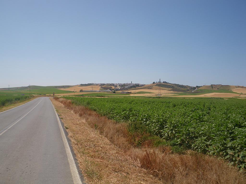 Vista de Paterna del Campo