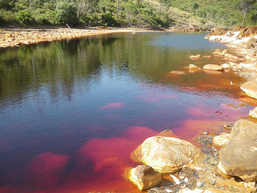 Aguas del río Tinbto