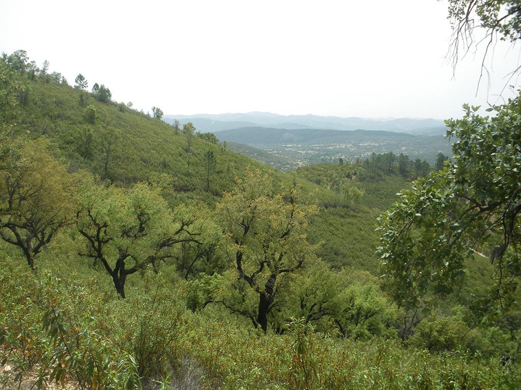 Vistas de la sierra hacia el sur desde Los Veneros